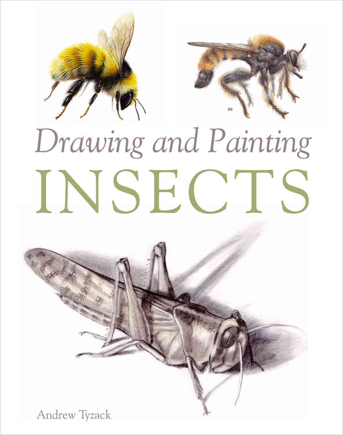Drawing and Painting Insects By Tyzack, Andrew
